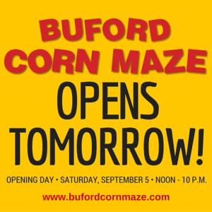 buford corn maze