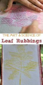 leaf rub