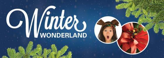 WinterWonderland2015WebMarquee2