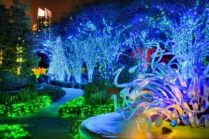 Atlanta Botanical garden-lights-chihuly_by_joey_ivansco